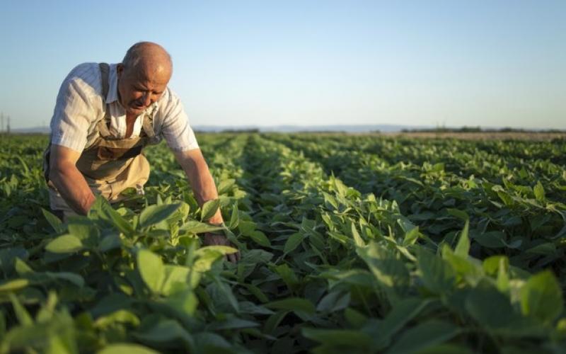 Održana izobrazba upotrebe pesticida u Udruženju obrtnika Sesvete
